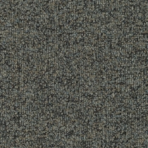 Patcraft Homeroom II 26 Night Classes Carpet