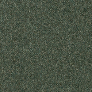 Patcraft Homeroom II 26 Seminar Carpet