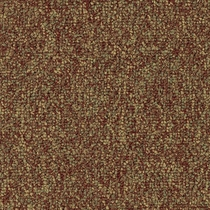 Patcraft Homeroom II 26 Studious Carpet