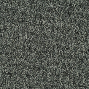 Patcraft Homeroom II Cramming Carpet Tile