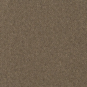 Patcraft Homeroom II Dorm Carpet Tile