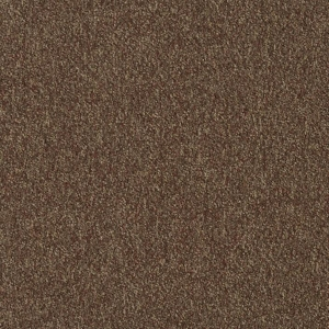 Patcraft Homeroom II Exam Carpet Tile