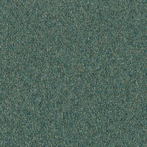 Patcraft Homeroom II Gifted Program Carpet Tile