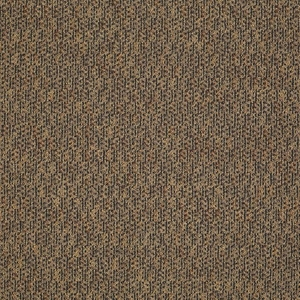 Patcraft Manner Novel Carpet