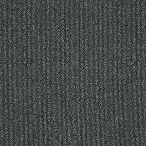 Patcraft Pace March Carpet