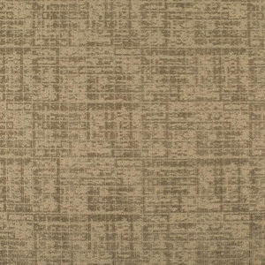 Patcraft Luxurious Sophisticated Carpet  Broadloom