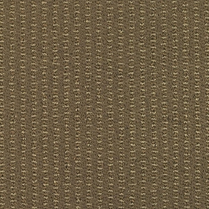 Patcraft Understated Sumptuous Carpet Broadloom