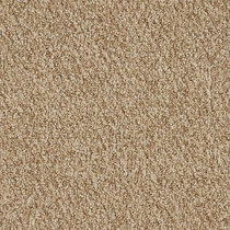 Patcraft Socrates II 26 Descartes Carpet