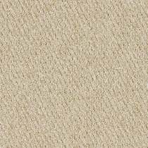 Patcraft Socrates II 26 Hume Carpet