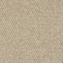 Patcraft Socrates II 26 Locke Carpet