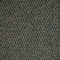 Patcraft Socrates II 26 Strauss Carpet