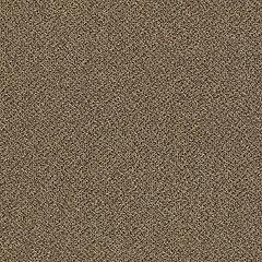 Patcraft Technique Novel Carpet