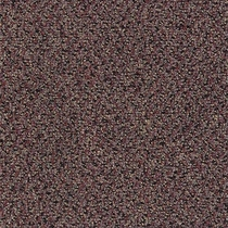 Patcraft Techno Marooned Carpet