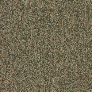 Patcraft Work It Strut Carpet