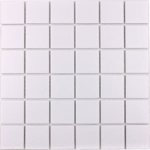 Shaw Oasis Light Grey Mosaic