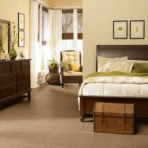 Shaw tuftex alante carpet flooring z6831 for Popular carpet colors for bedrooms
