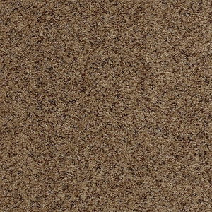Tuftex Move On Up Coastline Carpet