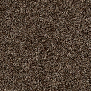 Tuftex Move On Up River Reed Carpet
