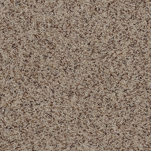Tuftex Move On Up Sugar N Spice Carpet