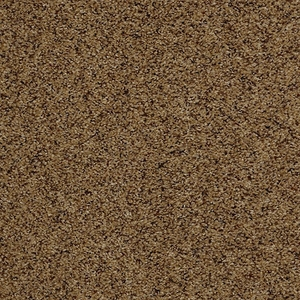 Tuftex Move On Up Toffee Crunch Carpet