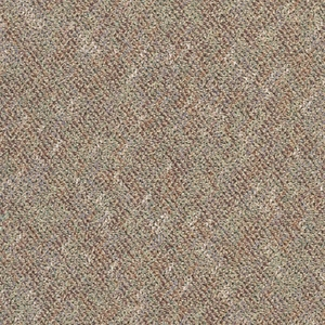 Tandus Infinity Dakota Plains Carpet Tile