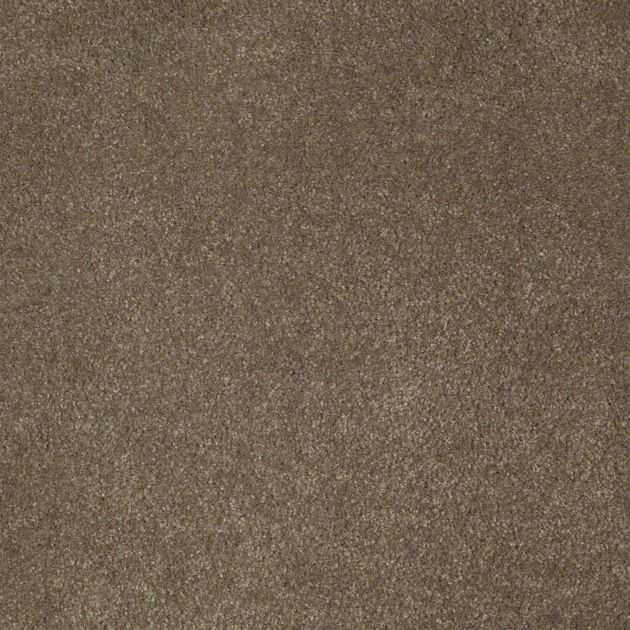 Tuftex True Inspiration Boardwalk Carpet Z6872 00755