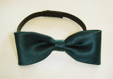 Boys Solid Green Bow Tie
