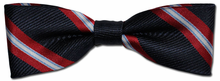 Boys Woven Navy Striped Bow Tie