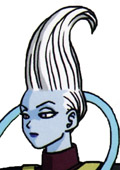 Battle of Gods Whis Custom Made Cosplay Wig