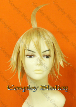 Tales of Symphonia Emil Castagnier Custom Made Cosplay Wig