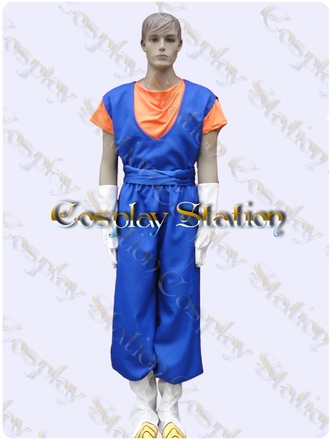 Vegito Cosplay Costume