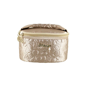 Retro Chic Train Case Champagne