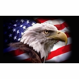 2a35a34cded Patriotic   Political Flags - Uncommon USA