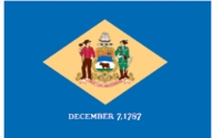Delaware State Flag 2x3