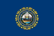 New Hampshire State Flag 2x3
