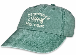 Neptune's Harvest Hat Sea Green