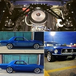 <strong>Will�s 1967 Mustang</strong>