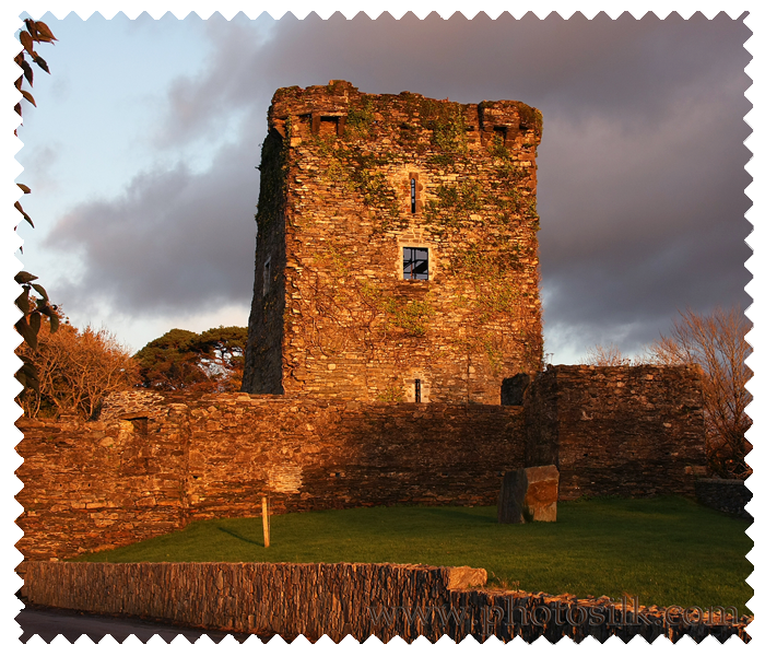 Carriganass Castle
