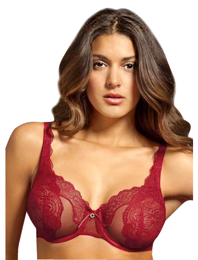Lunaire Whimsy Ashley Lace Semi Demi Underwire Bra 30611 - Red