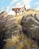 German Shorthaired Pointer: Precarious Point - original oil