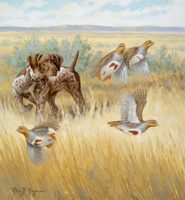 "<font size=""2"" font color=""red"">NEW</font> GSP and Gray Partridge: Resolute – giclee"