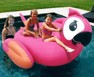 Pink Inflatable Pool Floating Giamt Parrot