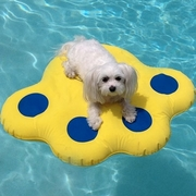 Paws Aboard Inflatable Raft