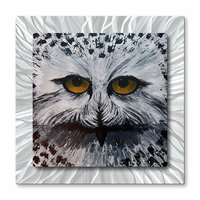 Snowy Owl Bird Portrait