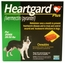 1 MONTH Heartgard Plus Green for Dogs 26-50 lbs