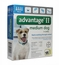 4 MONTH Advantage II Flea Control for Dogs 11-20 lbs