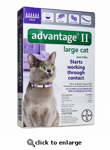 6 MONTH Advantage II Flea Control for Cats Over 9 lbs