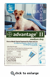 6 MONTH Advantage II Flea Control for Dogs 11-20 lbs