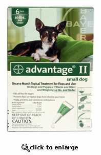 6 MONTH Advantage II Flea Control for Dogs Under 10 lbs