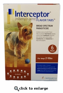 6 MONTH Interceptor Brown for dogs 2-10 lbs
